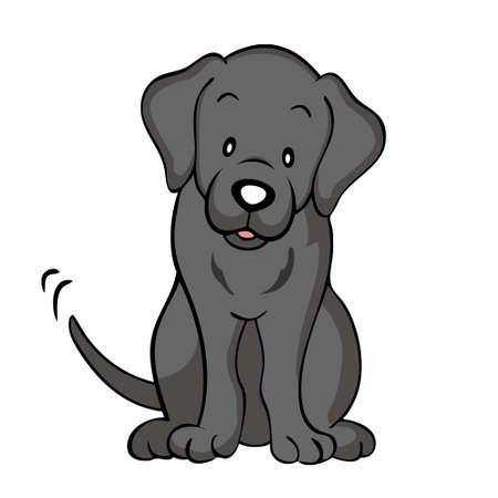 고립 된 검은 래브라도 강아지