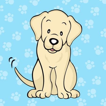 perro labrador: Amarillo perro labrador