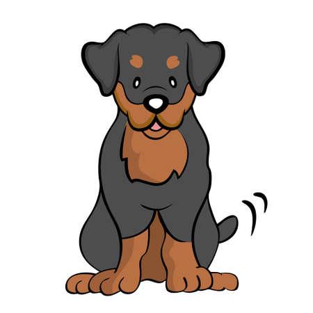Rottweiler isolated