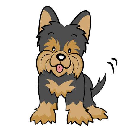 分離された黒ヨークシャー テリア子犬