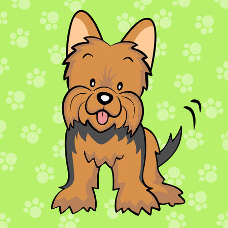 Brown Yorkshire terrier puppy Vector