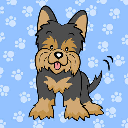 Black Yorkshire terrier puppy Vector