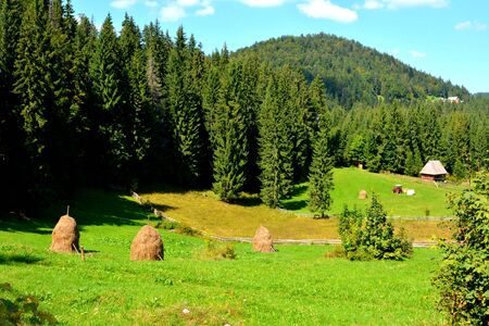 burg: Landscape in Apuseni Mountains, Transylvania The Apuseni Mountains is a mountain range in Transylvania, Romania, which belongs to the Western Romanian Carpathians, also called Occidentali in Romanian. The Apuseni Mountains have about 400 caves. Stock Photo