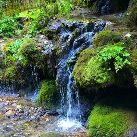 burg: Waterfall.  Landscape in Apuseni Mountains, Transylvania The Apuseni Mountains is a mountain range in Transylvania, Romania, which belongs to the Western Romanian Carpathians, also called Occidentali in Romanian. The Apuseni Mountains have about 400 caves Stock Photo