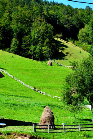 Haystack. Landscape in Apuseni Mountains, Transylvania The Apuseni Mountains is a mountain range in Transylvania, Romania, which belongs to the Western Romanian Carpathians, also called Occidentali in Romanian. The Apuseni Mountains have about 400 caves.
