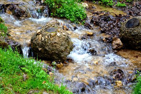 River bank in Brasov county, Transylvania, Romania.