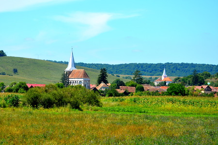 Typical rural landscape in the plains of Transylvania, Romania. Green landscape in the midsummer, in a sunny day Reklamní fotografie - 83925079