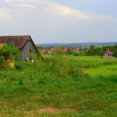 Paysage rural typique dans les plaines de Transylvanie, en Roumanie. Paysage vert au midsummer, en journée ensoleillée Banque d'images - 87004376