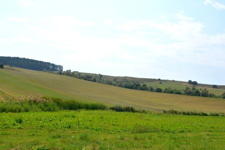 recently: Typical rural landscape in the plains of Transylvania, Romania. Green landscape in the midsummer, in a sunny day