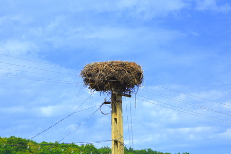 Nest of storks. Typical rural landscape and peasant houses in Bradeni, Henndorf, Hegendorf,  Transylvania, Romania. The settlement was founded by the Saxon colonists in the middle of the 12th century Stock Photo