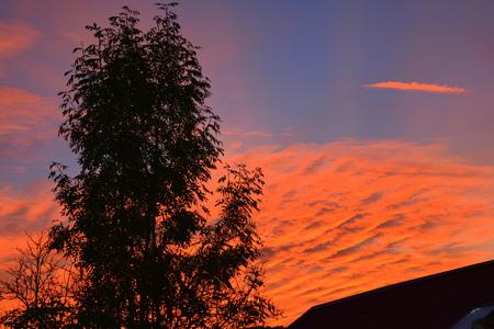 Sunset in the plains of Transylvania Reklamní fotografie - 90000455