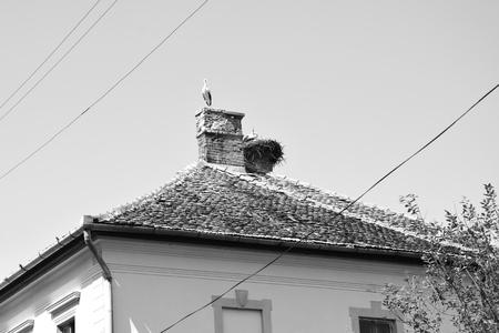 Typical rural landscape and peasant houses in  the village Toarcla, Tartlau, Transylvania, Romania