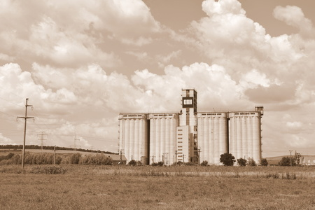 Silo. Typical rural landscape in the plains of Transylvania, Romania. Green landscape in the midsummer, in a sunny day