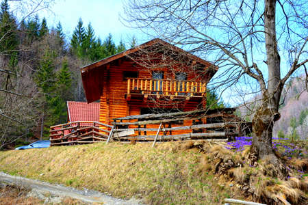 Chalet in Piatra Craiului in Carpathian Mountains, Transylvania. Typical landscape in the forests of  Romania. Green landscape in spring, in a sunny day 新闻类图片