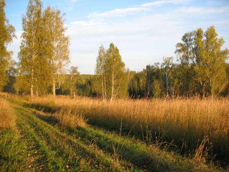 Autumn field photo