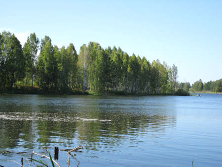 reverberation: There are  river, sky and summer trees