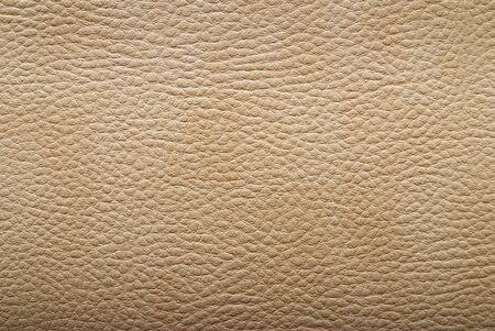 leather texture. Closeup of skin surface Stock Photo - 4946048