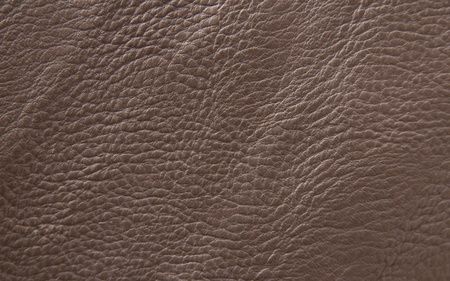 scrunch: leather texture. Closeup of skin surface Stock Photo