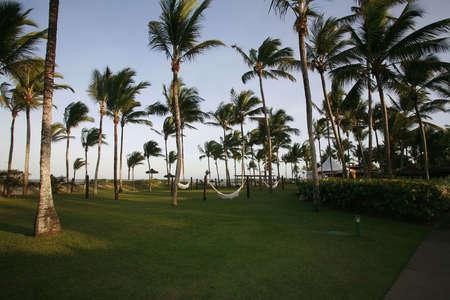 vacance: spiaggia di Bahia Archivio Fotografico