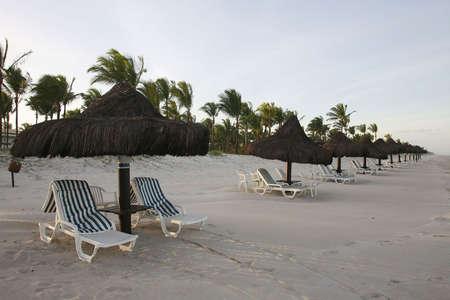 vacance: beach in bahia, brazil