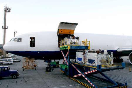 cheval de course se charge dans l'avion pour exporter à sao paulo, brésil Éditoriale