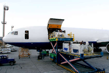 race horse is loading to the airplane to export in sao paulo, brazil Reklamní fotografie - 65921946