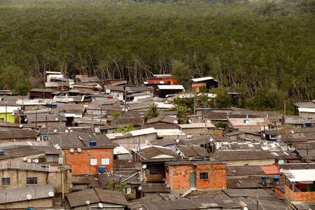 Slum invades atlantic forest in  area of mangrove ecosystem in Santos, coastal city in Sao Paulo, Brazil Editorial