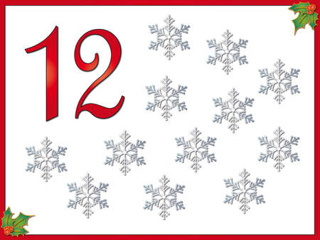 eleven: 12 days of christmas  12 Snowflakes