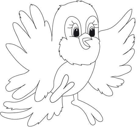 periquito: pájaro Foto de archivo