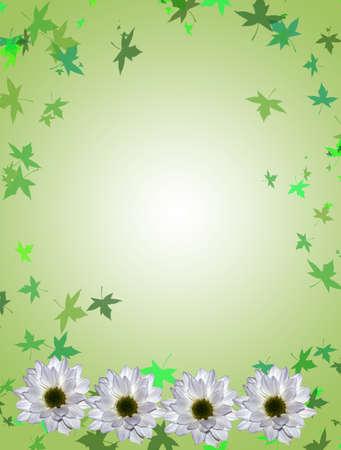 lilium: floral card Stock Photo