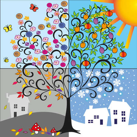 Illustration of tree representing the four seasons  spring, summer, autumn, winter