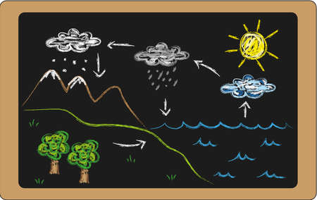 transpiration: water cycle on blackboard Stock Photo