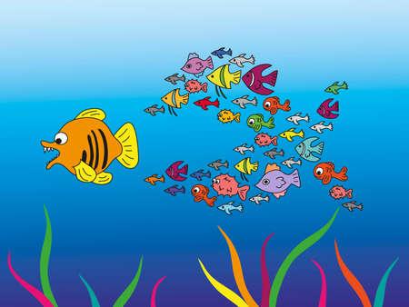 school of fish: big school of fish, eat a fish
