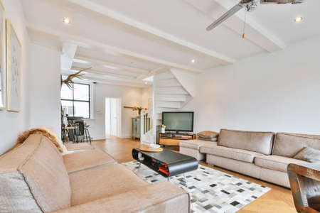 Big comfortable couches in white colored living room with rug on parquet floor in modern apartment Foto de archivo