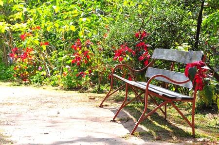 Bench in park Stock Photo - 18870761