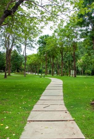 緑公園の草で覆われた通路
