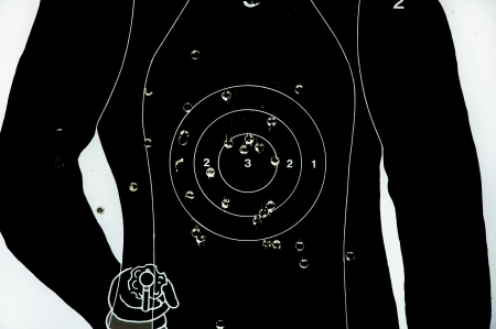 concealed: target gun.