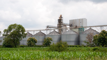 rice mill: storage tanks in rice mill, factory process production line in thailand.