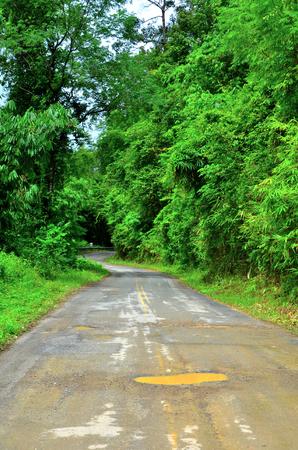 Damaged asphalt pavement road and potholes with trees. Stock Photo - 22585224