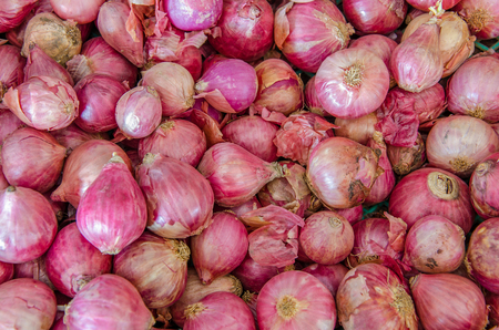 Pile of Onions, shallot is ingredient of thai food and catchup.