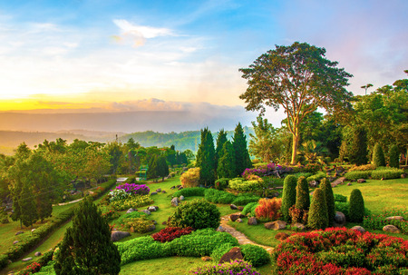 clouds: garden: Beautiful garden of colorful flowers on hill in the morning Stock Photo