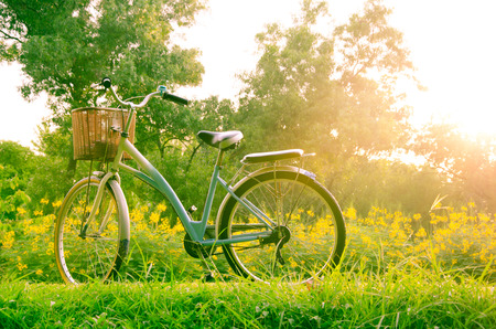 beautiful landscape with Bicycle at park  photo