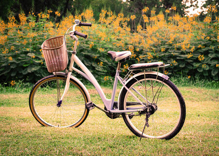 beautiful landscape with Bicycle at park. photo