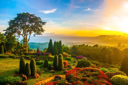 Beautiful garden of colorful flowers on hill with sunrise in the morning. Фото со стока