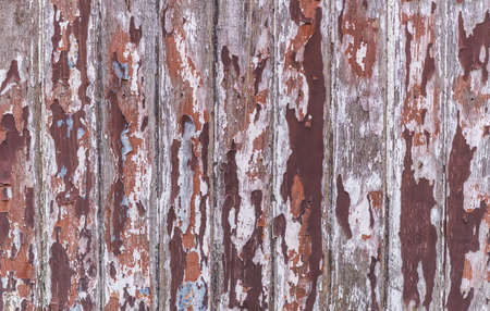 splintered: wooden planks texture with cracked color paint for background. Stock Photo