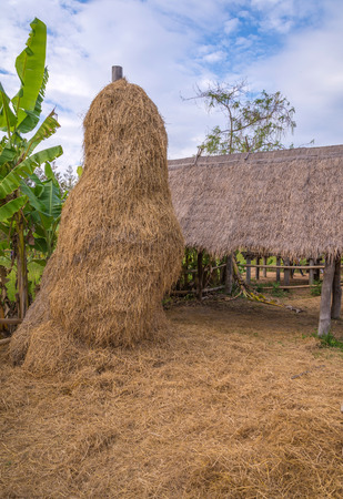 stack of straw or hay bales in a rural landscape photo
