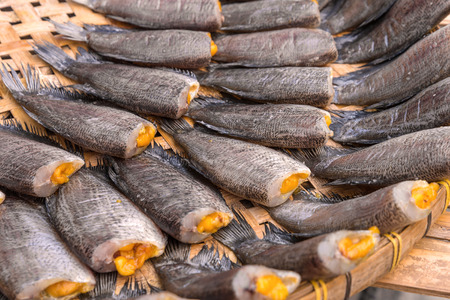 pectoralis: Trichogaster pectoralis, Dry fish out salty.