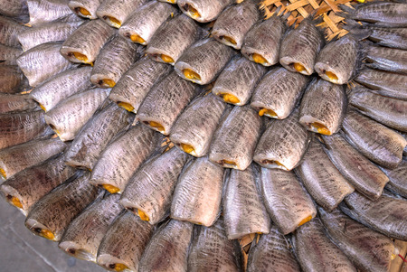 pectoralis: Trichogaster pectoralis, Dry fish out salty Stock Photo