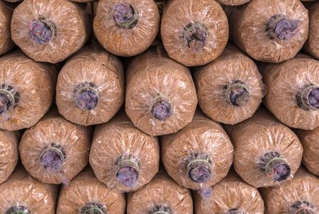 plentifully: Organic mushroom growing in farm