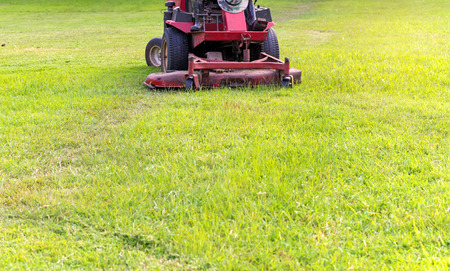 Closeup of mower cutting the grass in public park.